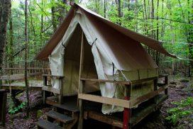 Rentals Tent Platform Canvas